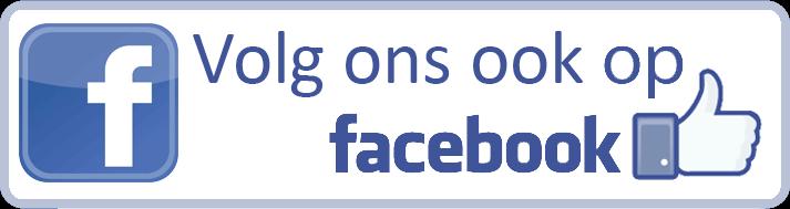 kinderfeestje idee facebook