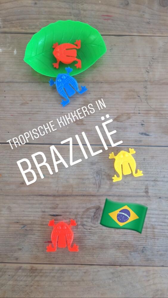 de giftige kikkers vangen in Brazilië