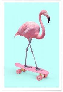 flamingo themakist